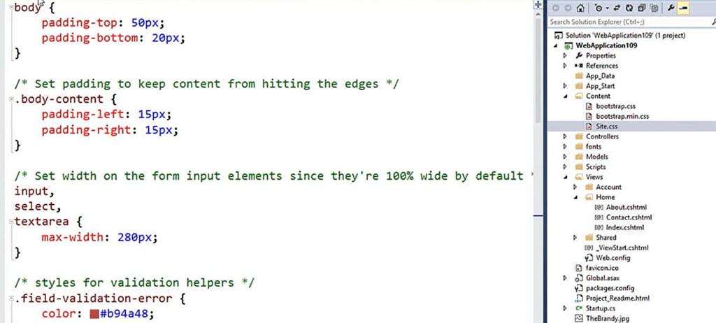 Bootstrap for ASP NET Development - TechBubbles
